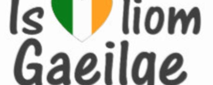 Irish Language Assessment – GardaIP has you covered